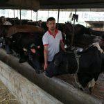 गाई पालनबाट मासिक ३ लाख आम्दानी गर्दै भुषाल